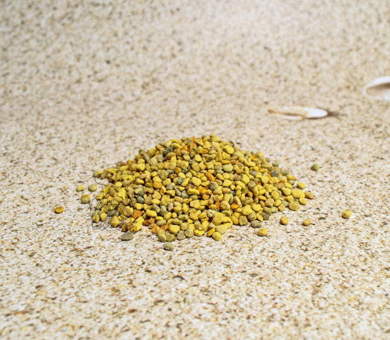 Billie's Bee Pollen (2 or 4 oz cups) - Hermit Crab Food - Organic - Hermit Crab - Pet Food - Hermie's Kitchen
