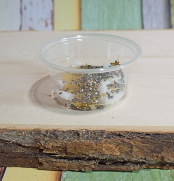 Chia Seed Pudding - Hermit Crab Food - Organic - Hermit Crab - Pet Food - Hermie's Kitchen
