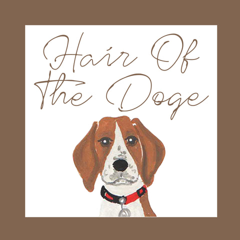 Hair Of The Doge │ Dog Shampoo