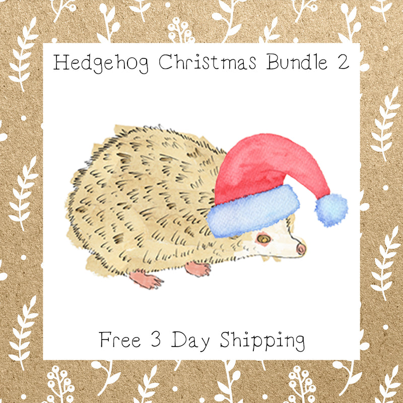 Hedgehog Christmas Bundle 2 │ Hedgehog │ Free Shipping
