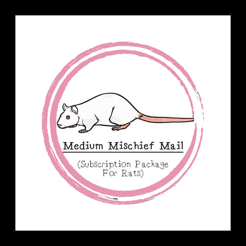 Medium Mischief Mail Package │ Subscription Package For Rats │ Rat Treats