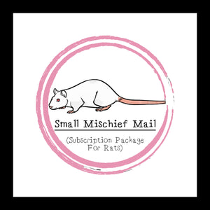Small Mischief Mail Package │ Subscription Package For Rats │ Rat Treats