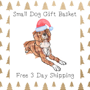 Small Dog Gift Basket │ Free 3 Day Shipping