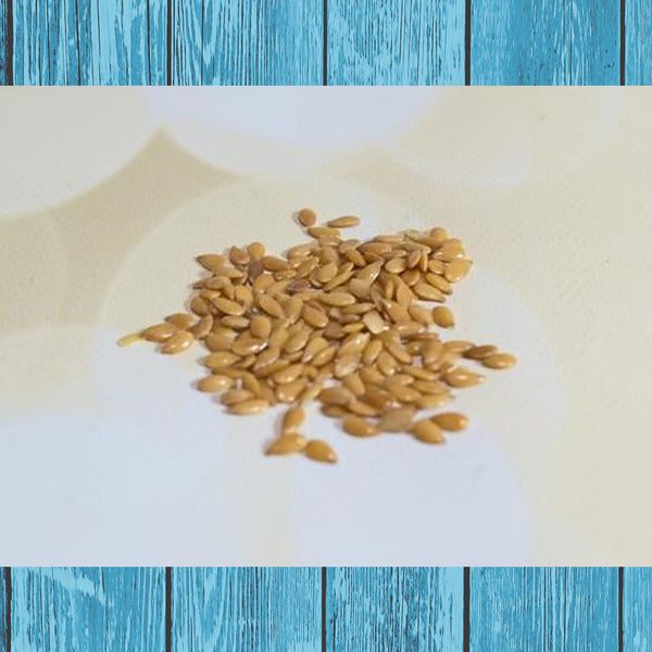 Flax Seeds - Hermit Crab Food - Organic - Hermit Crab - Pet Food - Hermie's Kitchen