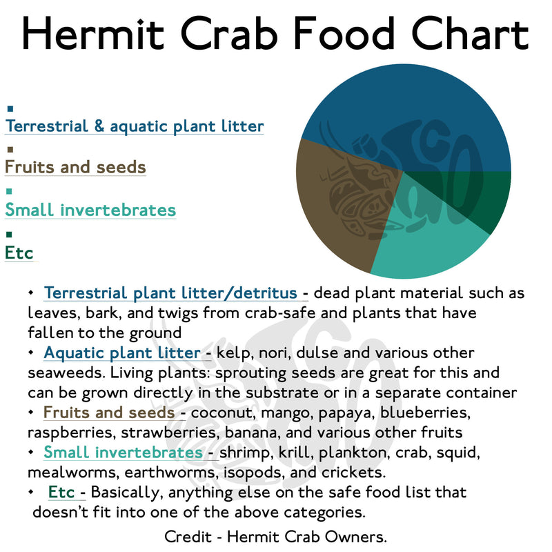 Rusty's Down By The Bay Mix - Hermit Crab Food - Organic - Hermit Crab - Pet Food - Hermie's Kitchen