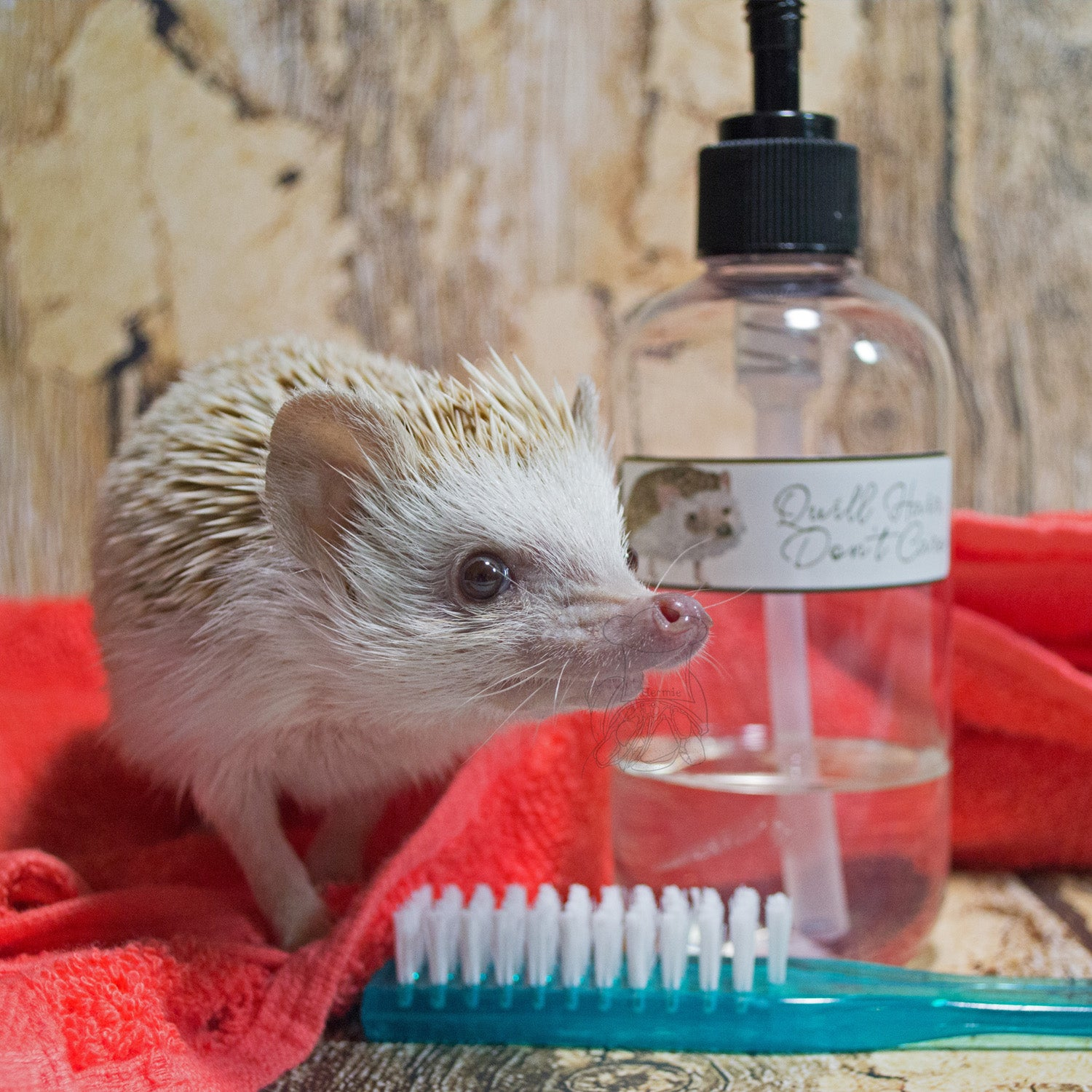 Hedgehog Bath Time Kit │ Hedgehog