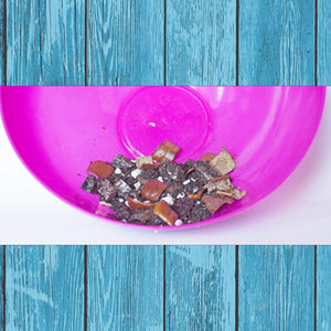 Life's A Beach - Hermit Crab Food - Organic - Hermit Crab - Pet Food - Hermie's Kitchen