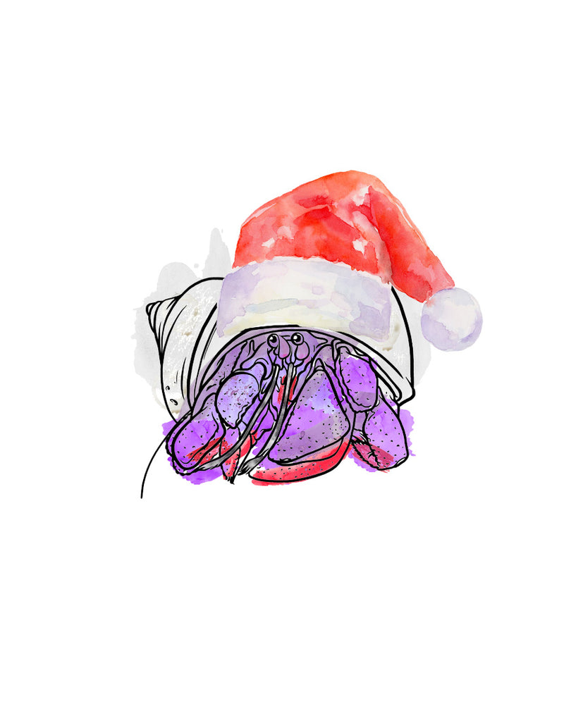 Rice Pudding │ Hermit Crab │ Crabmas