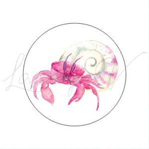 Hermit Crab Sticker│1