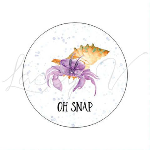 Hermit Crab Sticker│2