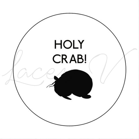 Hermit Crab Sticker│3