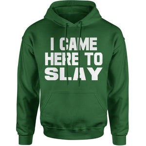 I Came Here To Slay All Day  Adult Hoodie Sweatshirt