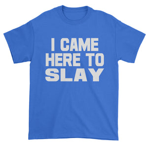 I Came Here To Slay All Day  Mens T-shirt