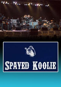 Promotional poster for Spayed Koolie at the 2016 HAPCO Oakland Arts& Music Festival