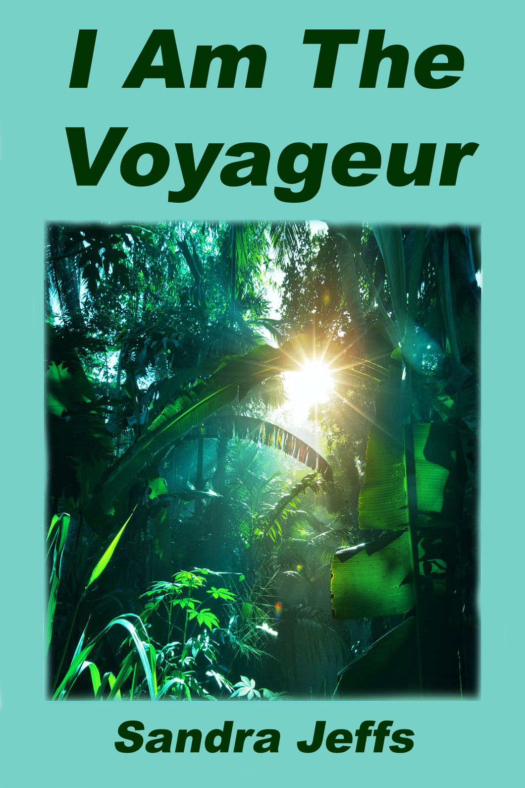 x - COMING SOON!  I Am The Voyaguer - Book - Sandra Jeffs