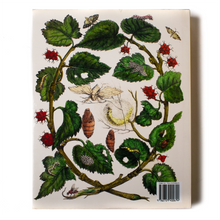 Load image into Gallery viewer, Botanicals Butterflies And Insects Hardcover Book