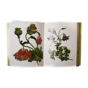 Botanicals Butterflies And Insects Hardcover Book
