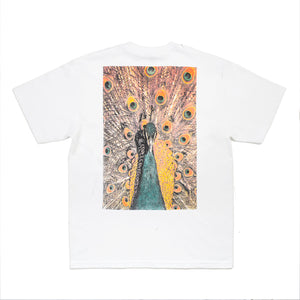 BetterTM Peacock Tee White