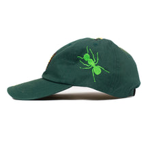 "Load image into Gallery viewer, Big Ant ""Timewarp Butterfly Cap"" Green"