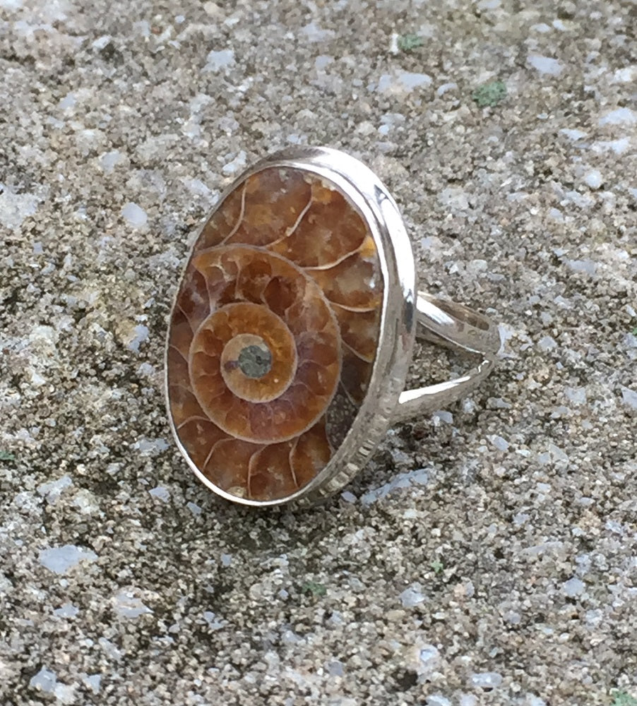 Ammonite Fossil Silver Ring - Size 9