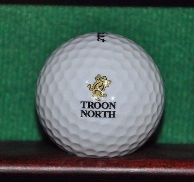 Troon North Golf Club Scottsdale Arizona Logo Golf Ball. Titleist. Brand New