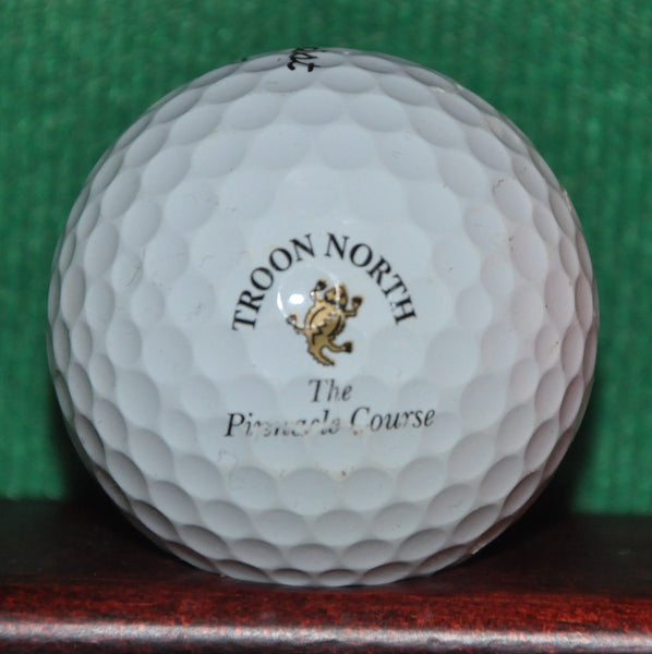 Troon North Golf Club Arizona Pinnacle Course Logo Golf Ball. Titleist Pro V1