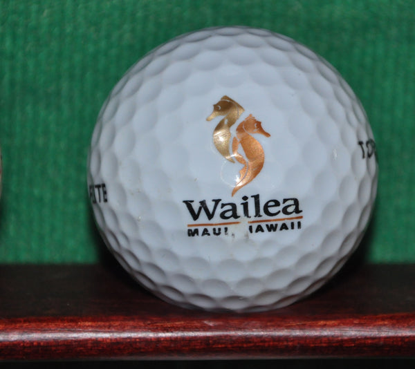 Wailea Golf Club in Maui Logo Golf Ball