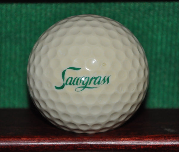 Vintage TPC Sawgrass Country Club Logo Golf Ball ~1980