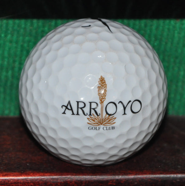 The Arroyo Golf Club Las Vegas Logo Golf Ball. Nike