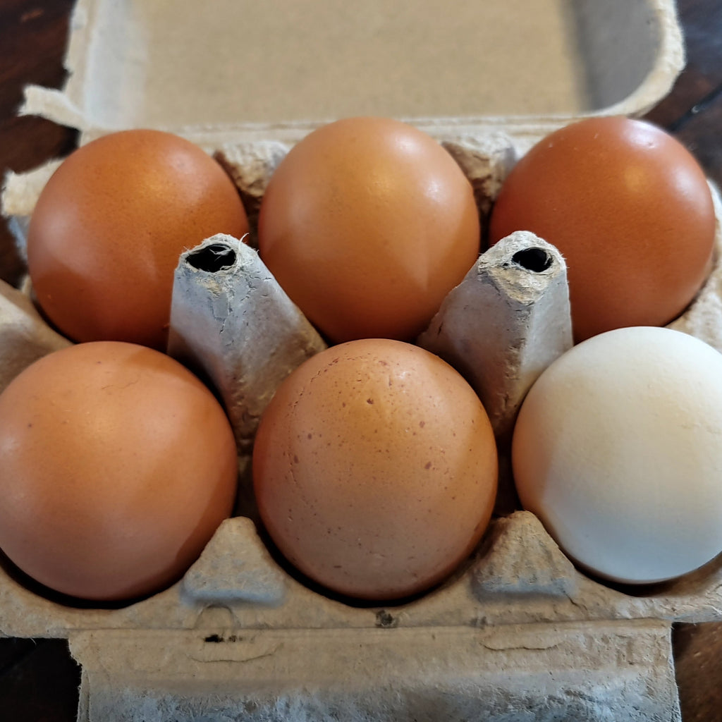 Eggs - Vermont Farm Fresh (Half Dozen)