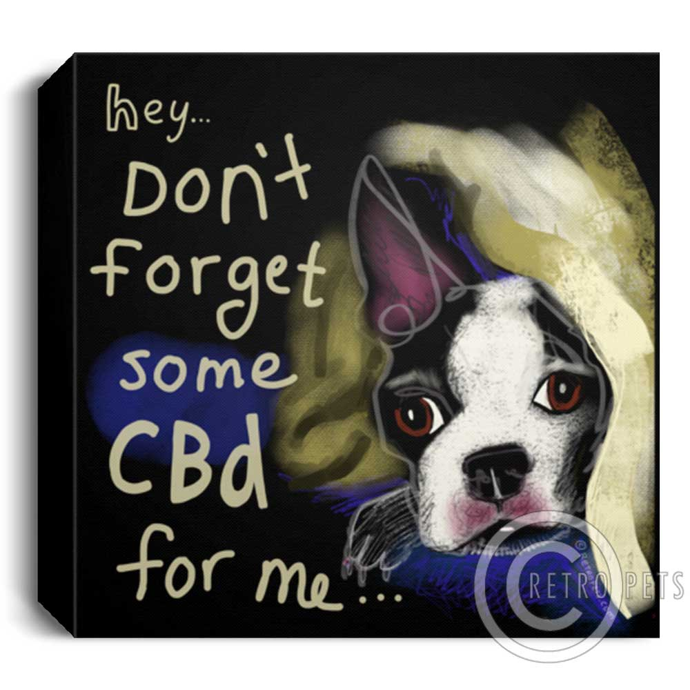 CBD Art of a little Boston Terrier hiding in a blanket. Artwork by Retro Pets artist Krista Brooks