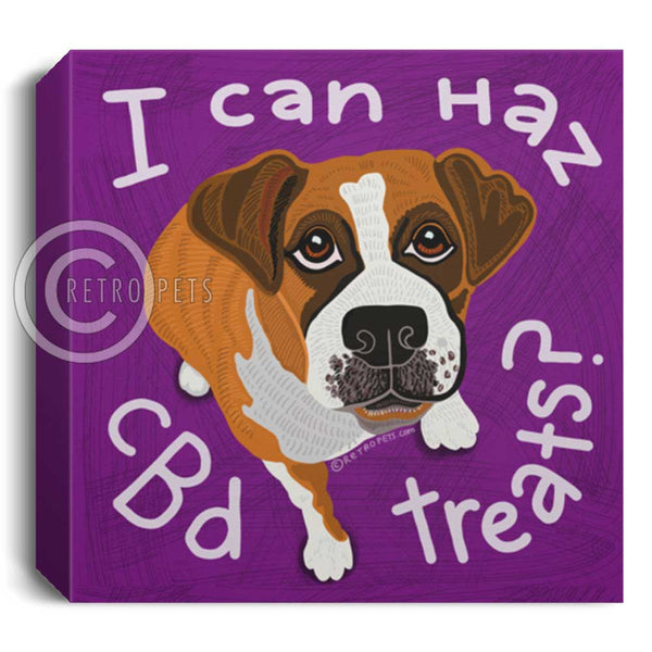 I Can Haz CBD Treats? Boxer dog canvas wall art for CBD Store. Available in 5 sizes.