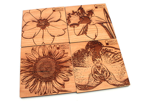 Olbrich Gardens Assorted Flower Coasters