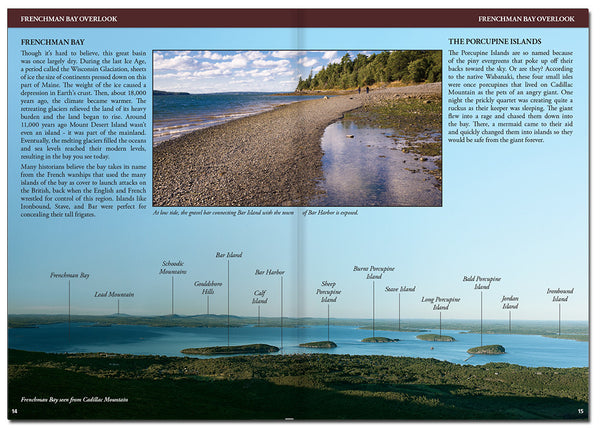 Acadia Field Guide