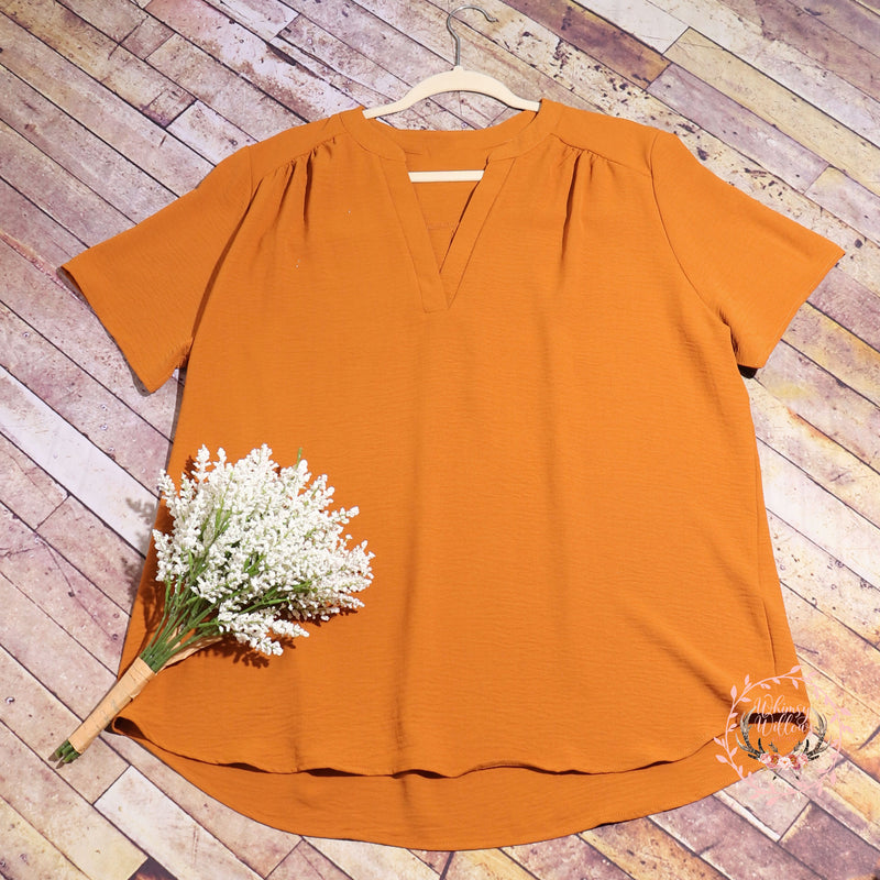Camel V-Neck Top