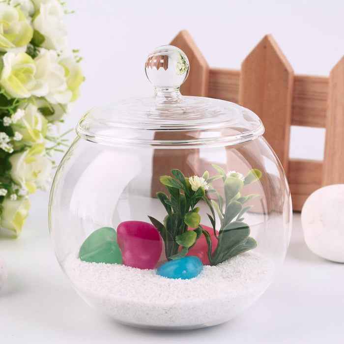 Glass Terrarium with Lid