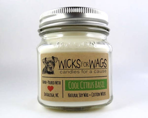 Cool Citrus Basil Wicks for Wags Candle