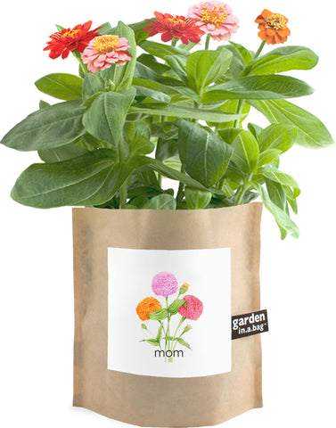 Mom Garden in a Bag
