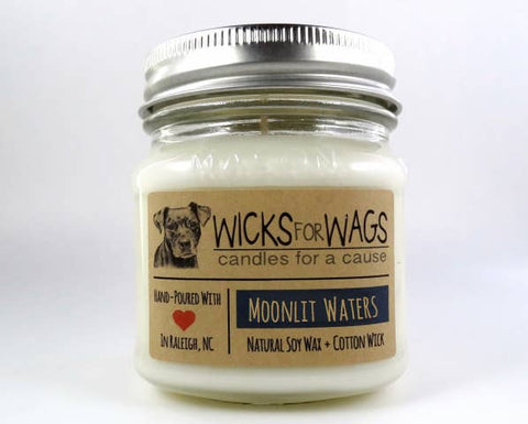 Moonlit Waters Wicks for Wags Candle