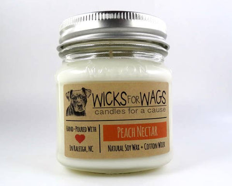 Peach Nectar Wicks for Wags Candle