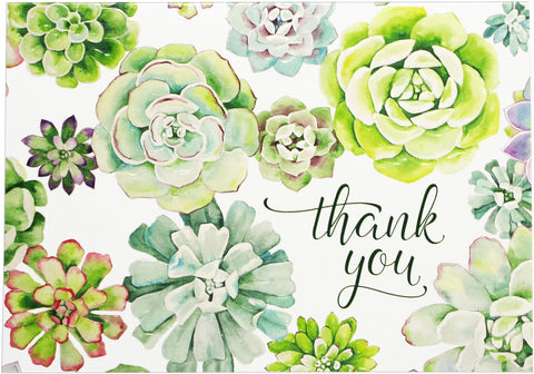 Thank You Cards - Succulents