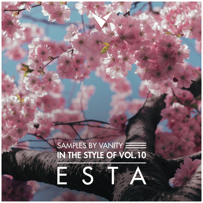 ESTA - In The Style Of Vol.10