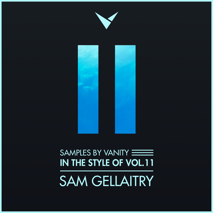 SAM GELLAITRY - In The Style Of Vol.11