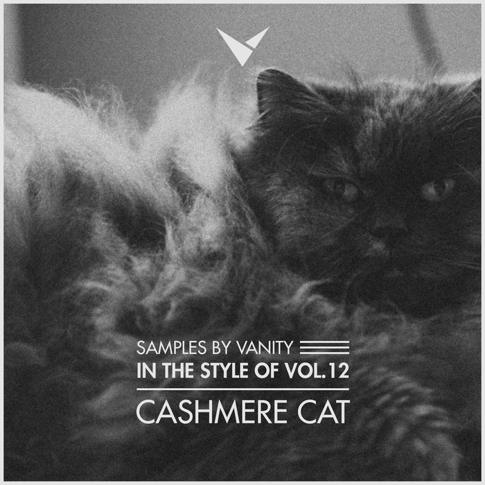 CASHMERE CAT - In The Style Of Vol.12