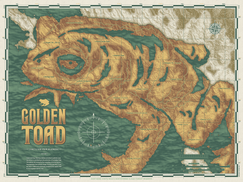 Animal Atlas: Golden Toad APs