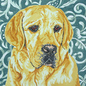 Yellow Lab/Silk Bkgd.