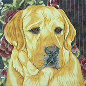 Yellow Lab/Floral Bkgd