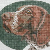 German Shorthair/Oval