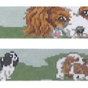 King Charles Dog Collar