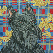Scottie on Plaid